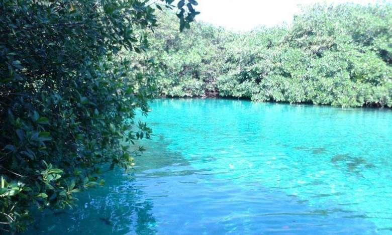 Cenote Manati