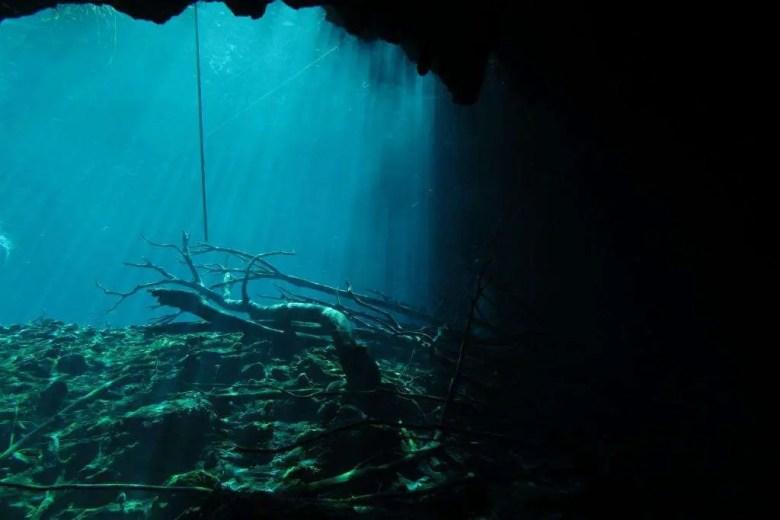 Cenote Actun Ha ou Cenote Carwash