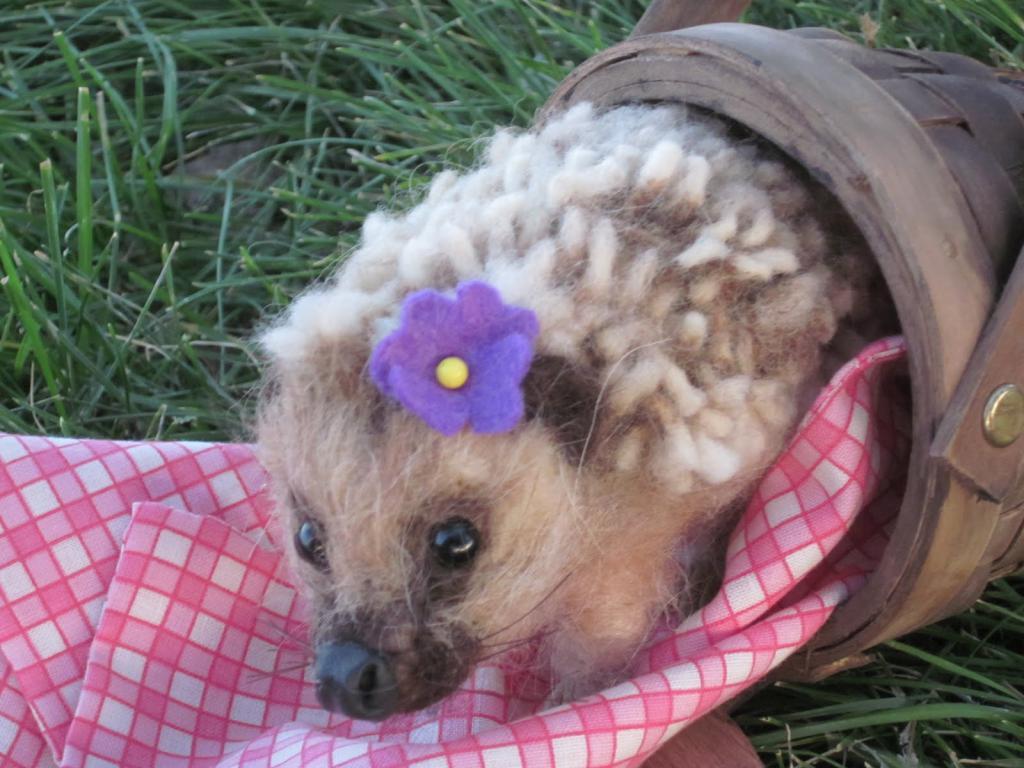 Ang mga hedgehog ay ipinanganak na may karayom o hindi