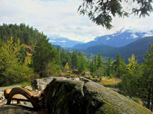 Squamish River Valley ~ British Columbia :: On the road to Whistler