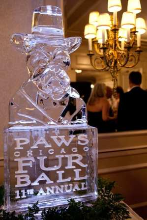Ice sculpture, photo by Malia Rae Photography