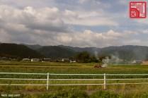 479_Gifu Prefecture