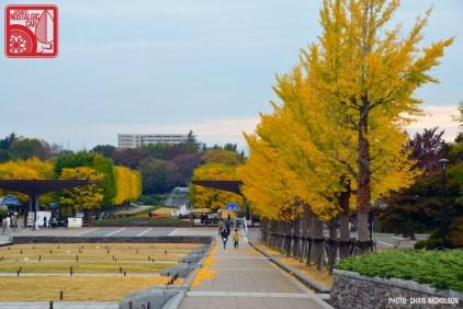 0875_ShowaKinen