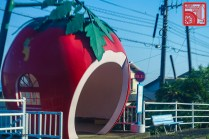 2228_Konagai fruit bus stops