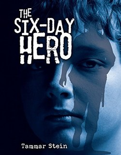 The Six-Day Hero by Tammar Stein
