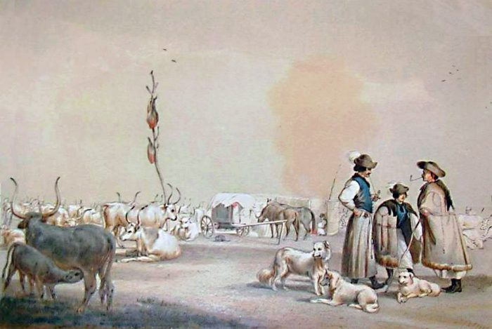 Gulyás [Herdsman]: romantically transfigured nationalist themes in these lithographs by Károly Sterio (1821-1861). Artwork like this made the idea of common gulyás as a national food more attractive, palatable, and acceptable for the Hungarian nobility in their fight against the Austrian nobility. (picture by commons.wikimedia.org)