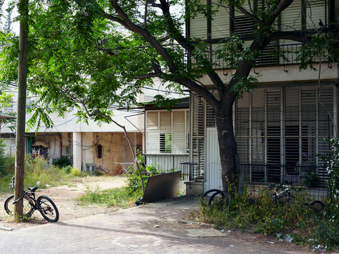 Home with tree and bicycle