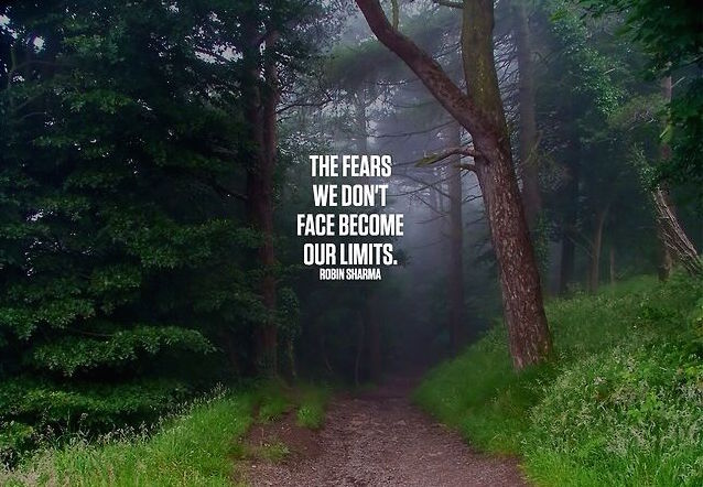 """""""The fears we don't face become our limits."""" Robin Sharma"""