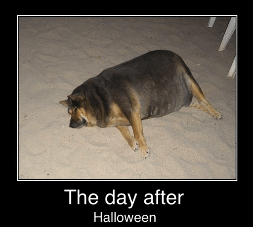 The Day After Halloween