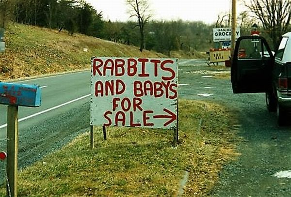 Babys For Sale?