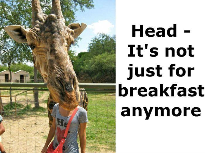 Head For Breakfast