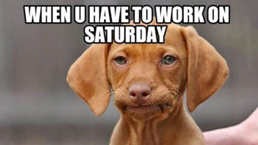 Working on Saturday