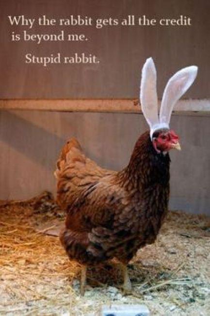 Stupid Easter Bunny image