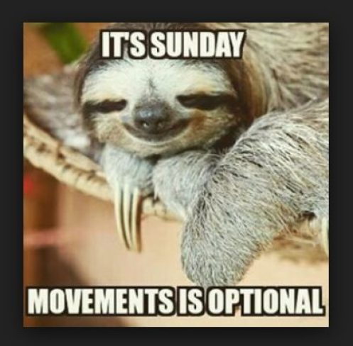 Sunday Sloth image