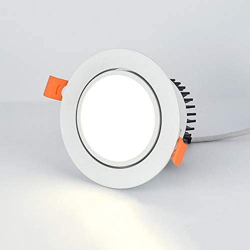Sunny Lingt LED Recessed Downlight 2-in-1 SMD 2835 3W 5W AC110-240V Ceiling Spot Lamp, 3000K 6000K Cutout 55-60mm, Picture Display Accent Lamp Wash Wall Lighting, Kitchen Indoor Lighting