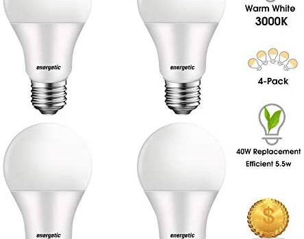 A19 40 Watts LED Light Bulb, 3000K Warm White 450 Lumens Light Bulbs, Non-dimmable, UL Listed, 4-Pack