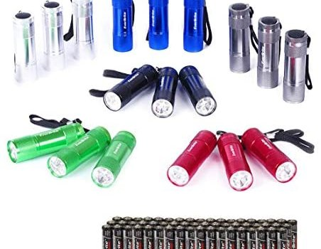 EverBrite 18-pack Mini LED Flashlight Set – Portable Flashlights Ideal for Hurricane Supplies Camping, Night Reading, Cycling, BBQ, Party, Backpacking – Includes Lanyard & 54 x AAA Batteries