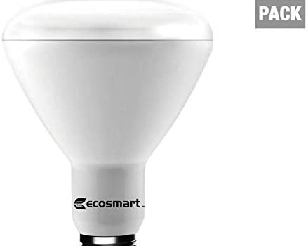 Ecosmart Daylight LED BR30 Dimmable Flood Bulb, 65W Replacement, 9 Watt, 685 Lumens – 5000K – Indoor/Outdoor Rated (12-Pack)