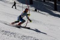 Skiing Fast