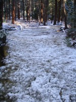 Frazil ice backed up in Yosemite Creek