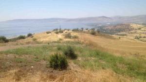 Beitragsbild zum Beitrag die andere Wange hinhalten : Landscahft in Galiläa mit Blick auf den See Genesareth