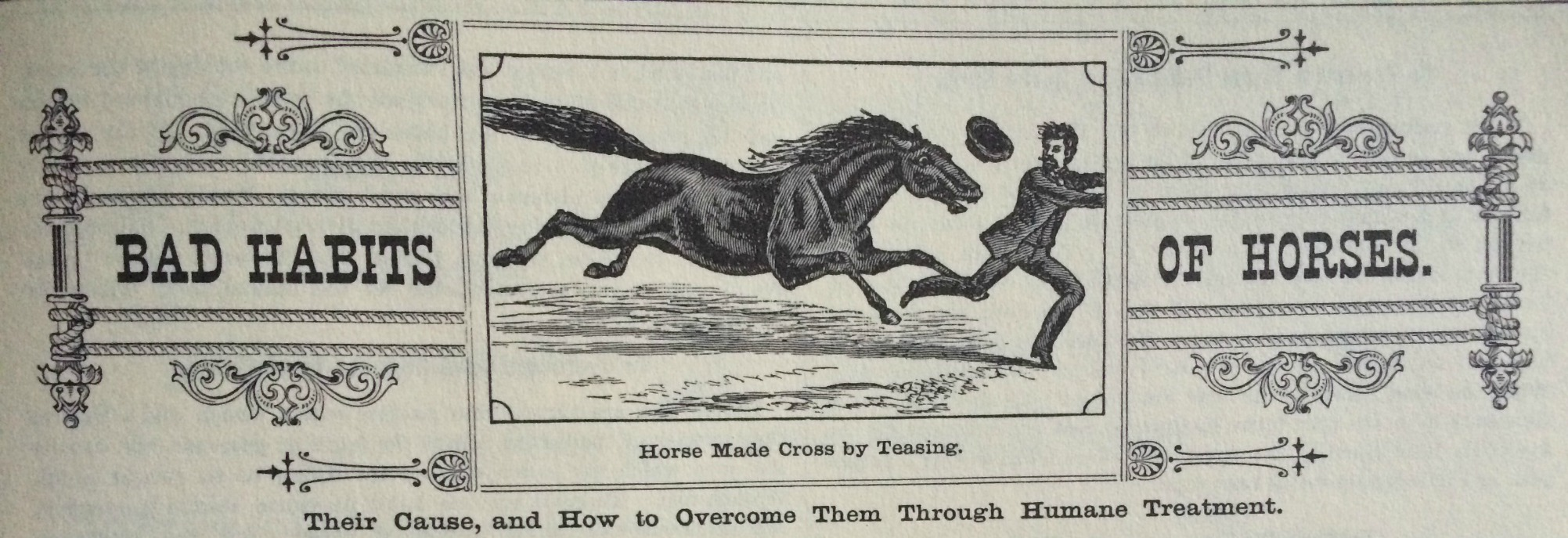 Never Give a Lady a Restive Horse