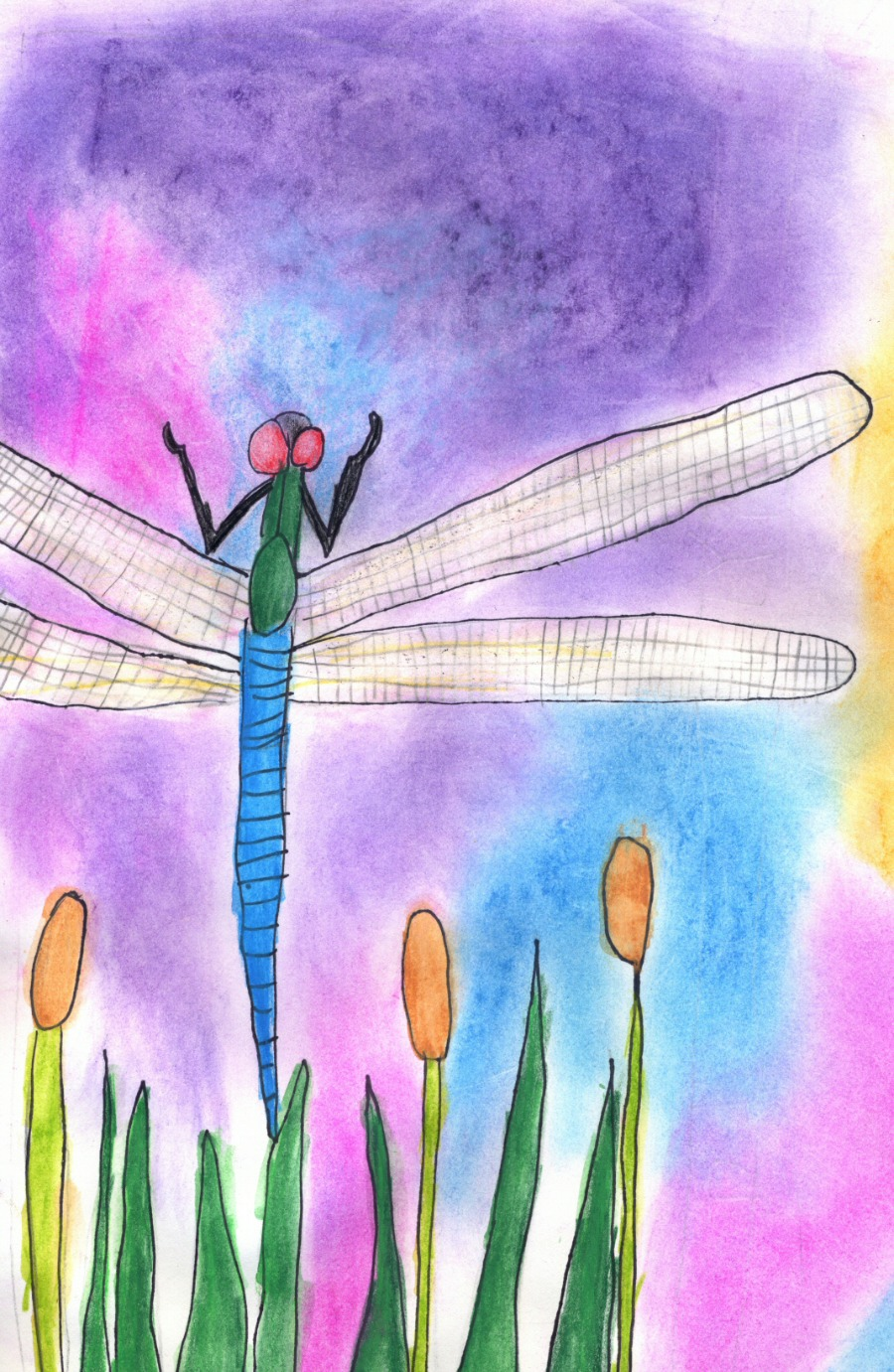 Dragon Fly by June, a student of Linda Cover