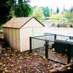 Shed at the dog park constructed by Tyler Shager