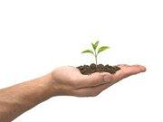 Hand Dirt Seedling Gift