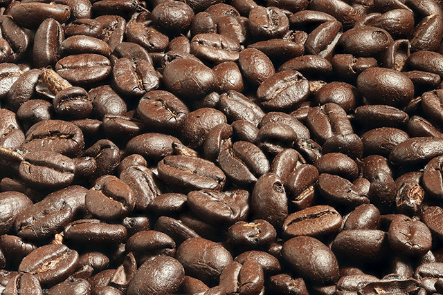 Coffee Beans Focus Stack Using Canon W-E1 Wi FI Adapter