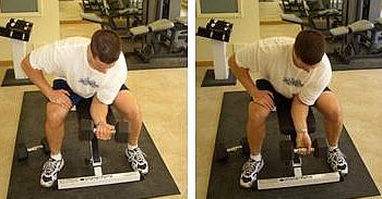 palm-up-dumbbell-wrist-curls-forearm.jpg