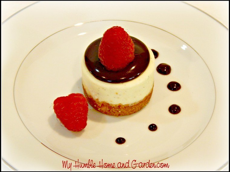 Want a Beautiful and Simple Mini Cheesecake Dessert?