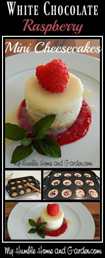 White Chocolate Raspberry Mini Cheesecakes! on MyHumbleHomeandGarden.com