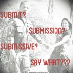 Submit, Submission, Submissive
