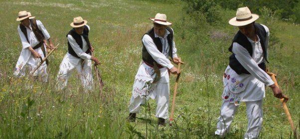 Košnja trave i narodne pjesme kosaca