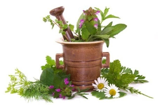 Sakupljanje i čuvanje ljekovitog bilja