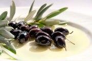 Maslinarstvo i narodni poslovi oko maslina i domaćeg maslinova ulja