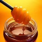 Med i ljekovita svojstva meda