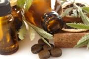 Tradicionalni prirodni ljekovi i njihovo korištenje