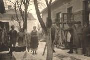 Tradicija kolinja ili svinjokolje