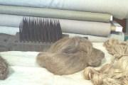 Prerada i korištenje lana, najvažnija svojstva lana