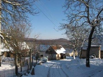 Zimski život na selu