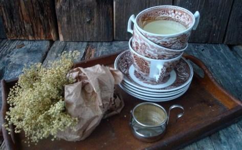 ljekoviti čaj od bazge