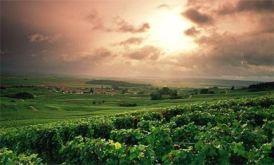 Francuska regija champagne