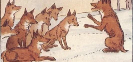 Poučna priča o lisici i repu