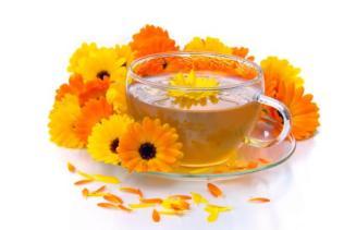Ljekovita svojstva bilja, ljekovi naših baka - ljekoviti čaj od nevena