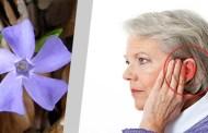 Prirodni lijek za vrtoglavicu i liječenje tintusa