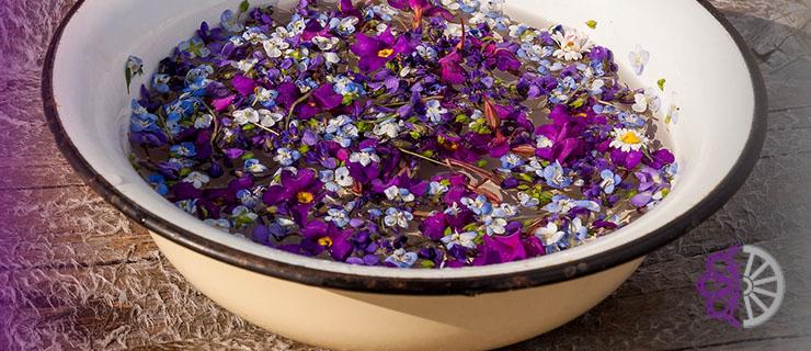 Tradicija Cvijetnice i običaj umivanja u cvijeću