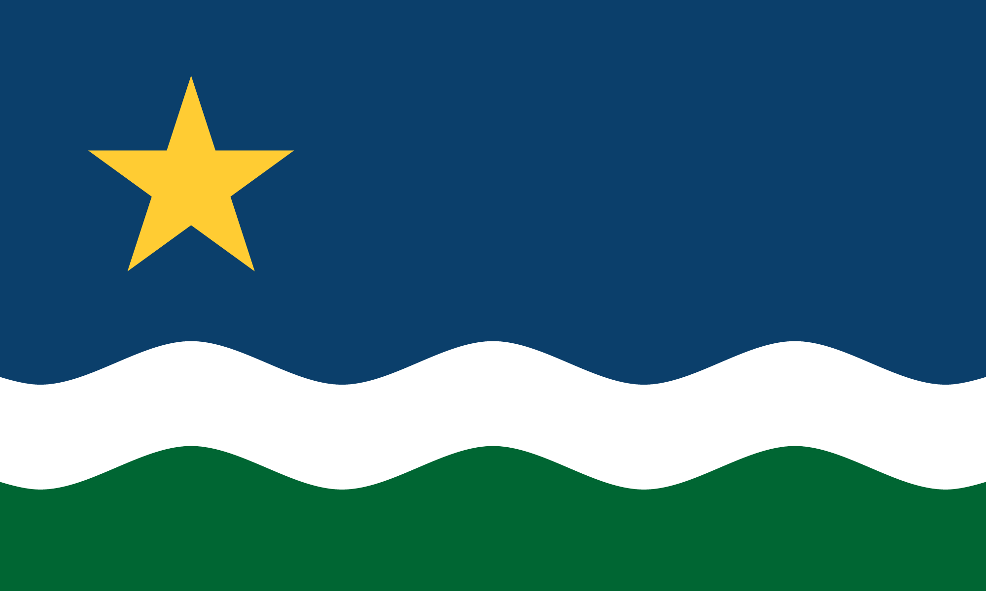 The 2017 North Star Flag (2017)