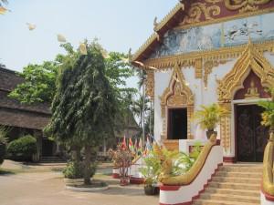 laos-pakse-temple